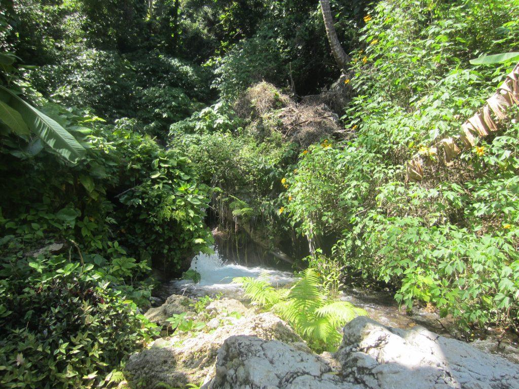 LatinA Tours Dominican Republic Barahona - Villa Miriam, Excursion, Nature, Swimming pool