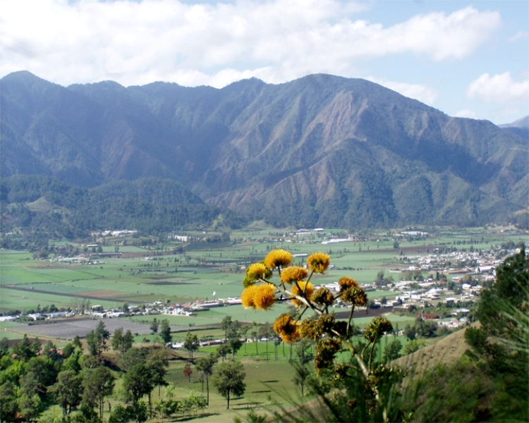 LatinA Tours DomRep Central Valley - Constanza, Farming, Flower, Village, View,