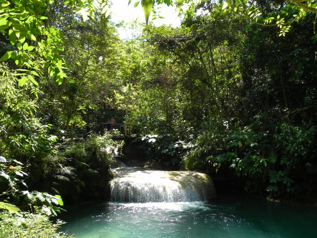LatinA Tours Kuba Cienfuegos - El Nicho, Nature, Waterfall, Plants, Central Region