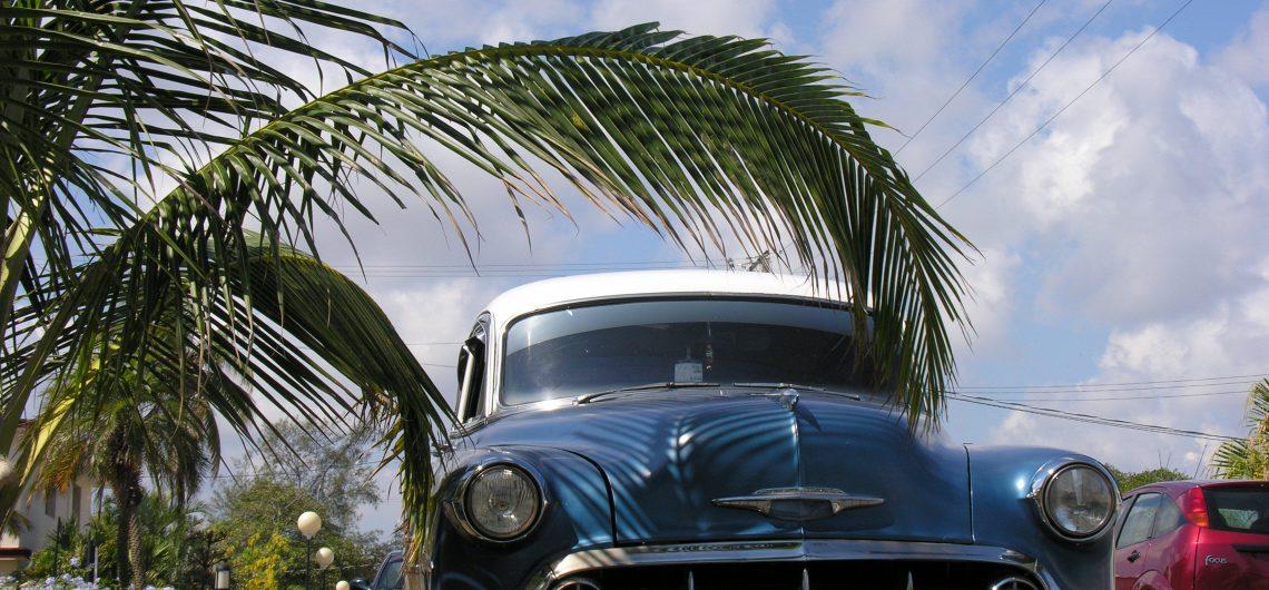 LatinA Tours Cuba - Vintage Car, Oldtimer, Transfer, Taxi, Plant, Flora, Kuba