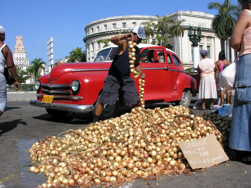 LatinA Tours Cuba Havana - Market, Capitolio, Park, Cuban, Excursion, Occidental Region