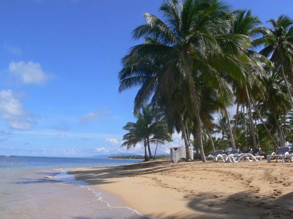 LatinA Tours DomRep Las Terrenas - Sandy beautiful beach, Ocean, Palm tree, Shades
