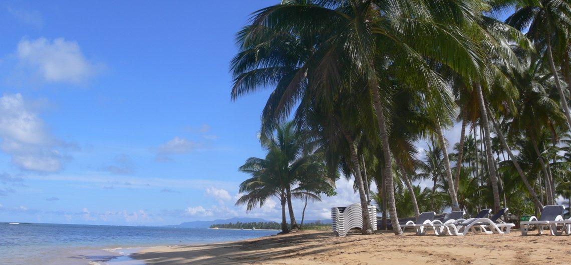 LatinA Tours DomRep Las Terrenas - Sandy beautiful beach, Ocean, Palm tree, Shades