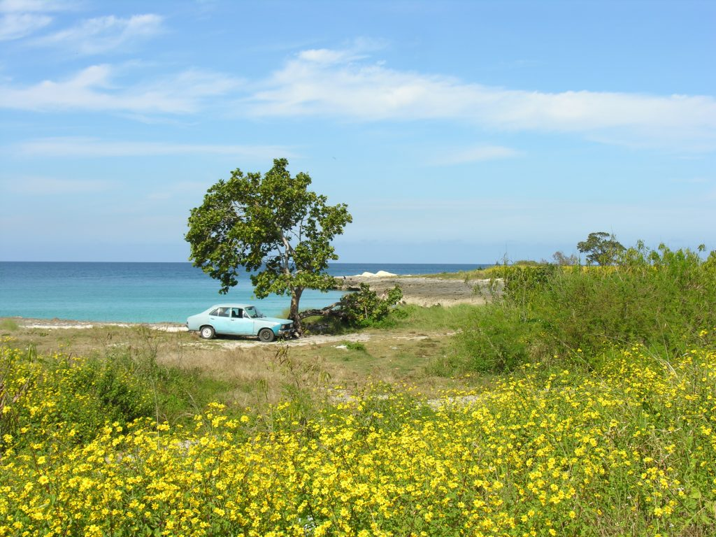 LatinA Tours Cuba Matanzas Carbonera - Nature, Flowers, Car, Ocean, Beach, Cuba