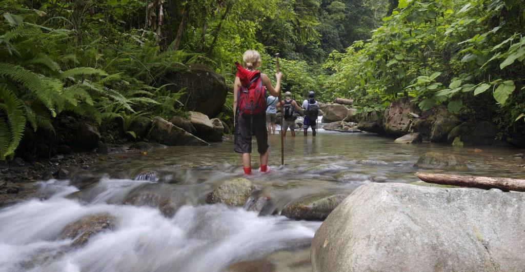 Costa Rica LatinA Tours Selva Bananito Wanderung