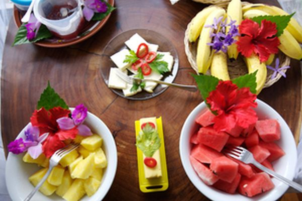 LatinA Tours Costa Rica Selva Bananito Lodge Frühstück Obst