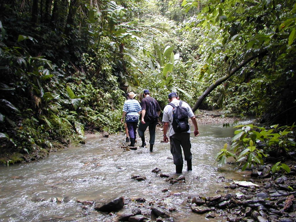 LatinA Tours Costa Rica Selva Bananito Lodge Ausflug JungleTour