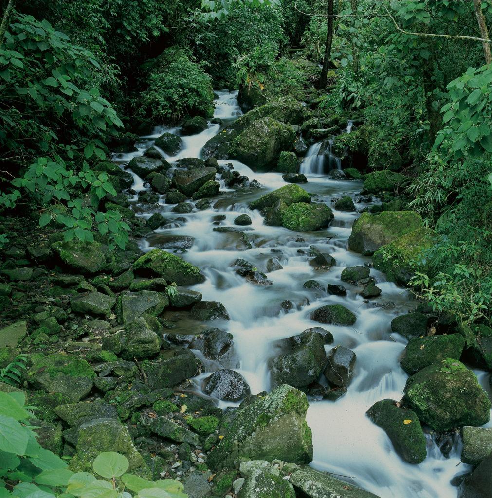 LatinA Tours Costa Rica Braulio Carillo Fluss