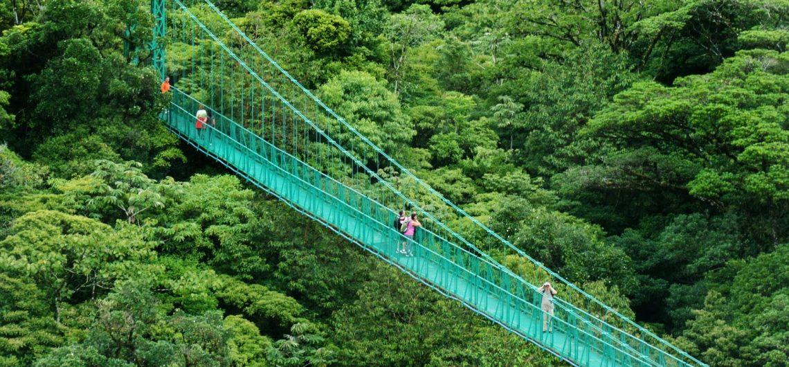 LatinA Tours Costa Rica Monteverde Hanging Bridges
