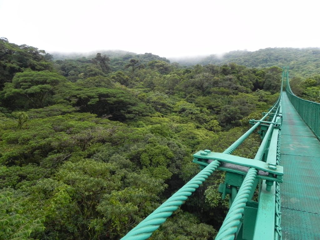 LatinA Tours Costa Rica Monteverde View