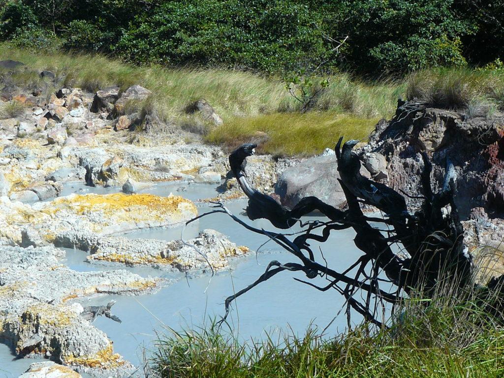LatinA Tours Costa Rica Rincon De La Vieja Lagoon