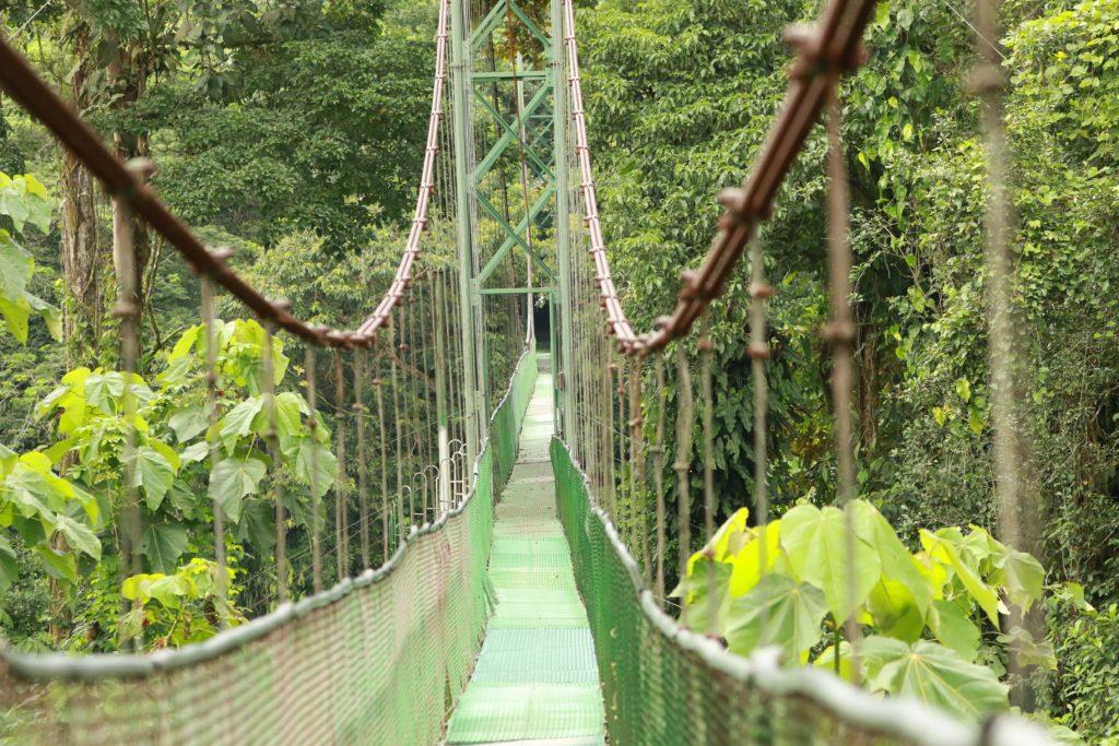 LatinA Tours Costa Rica Tirimbina Hängebrücke
