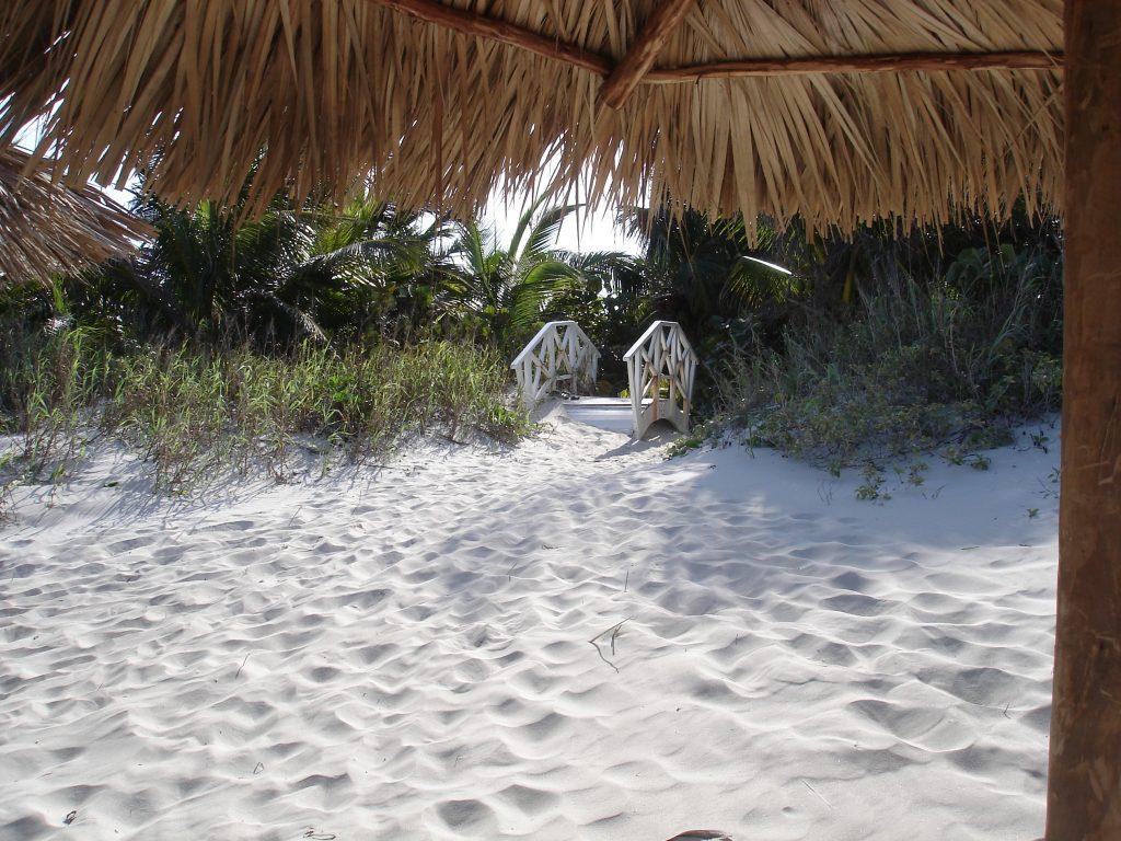 LatinA Tours Cuba Beach - Ocean, Bridge, Nature, Green, Sand, Relaxing Holiday