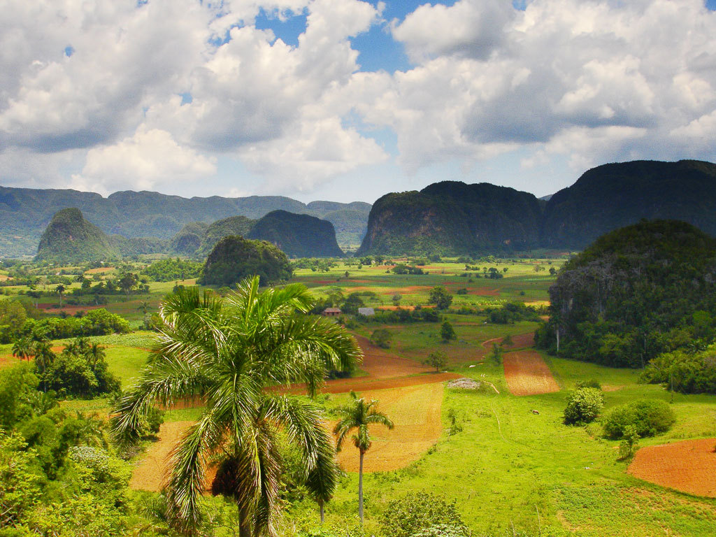 LatinA Tours Kuba Viñales - Tobacco, Farmer, Growing, Mountain, Leaves, Landscape