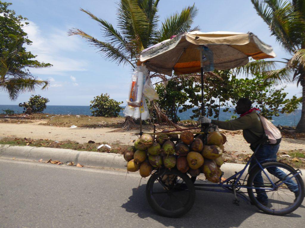 LatinA Tours Santo Domingo Malecon Coconuts