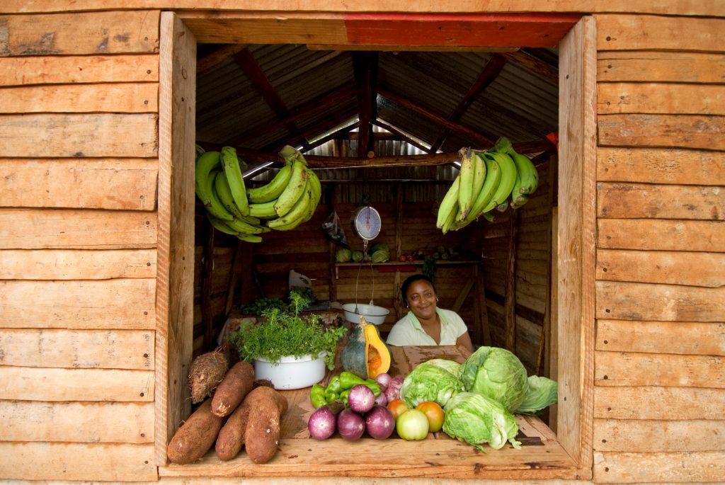 LatinA Tours Dominikanische Republik Laden Obst Gemüse