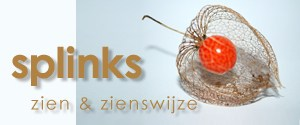 Logo Splinks