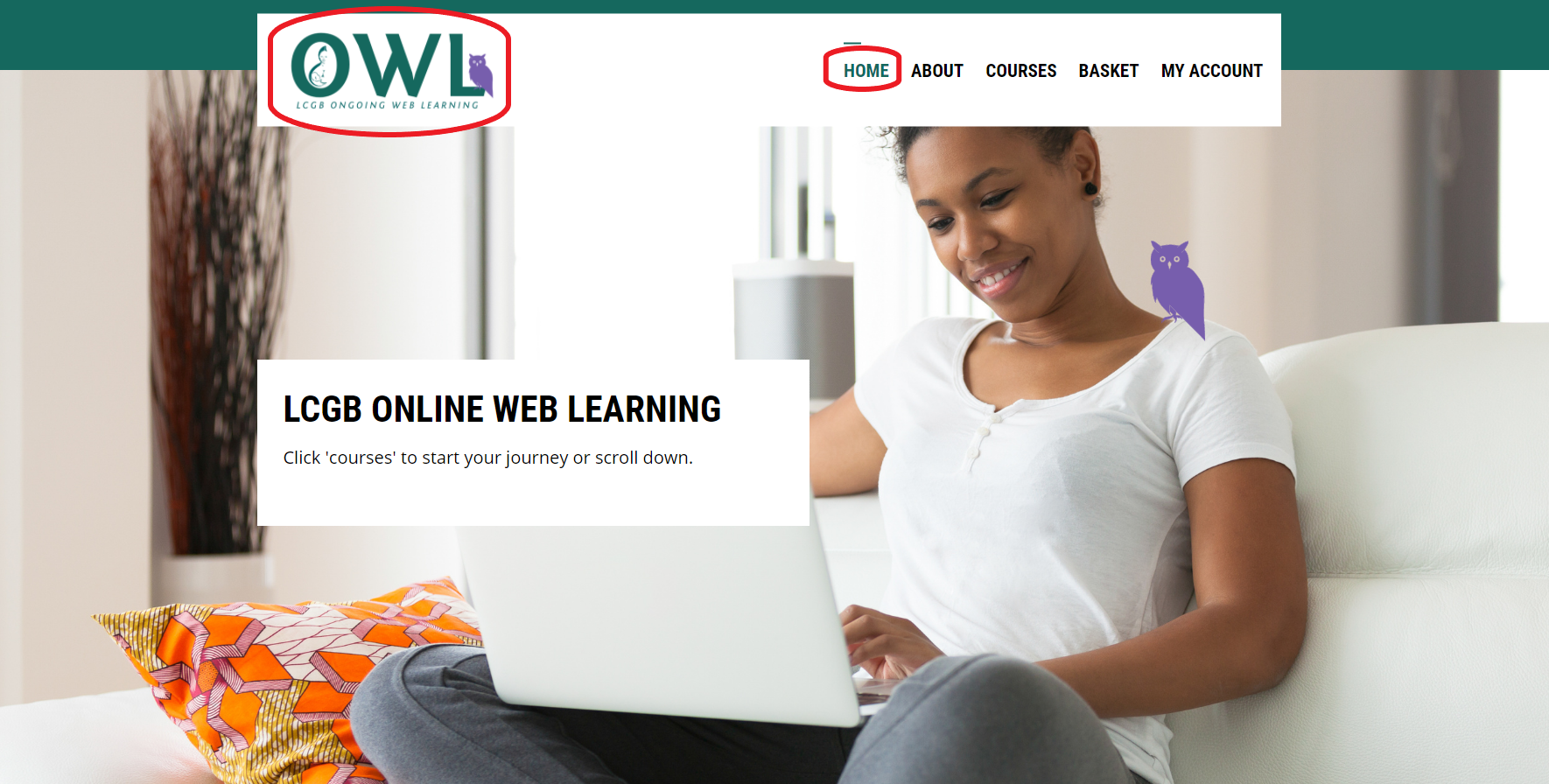 Home Page with OWL logo circled at top left