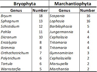 The table showns the most specTable with most species rich genera within Bryophyta (mosses) and Machantiopyta (liverworts) on Svalbard