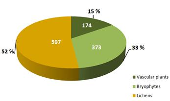 Cake-diagram; number of species of bryophytes, lichen and vascular plants registered on Svalbard