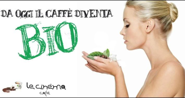 6x3 Le Cinéma Cafè caffè bio