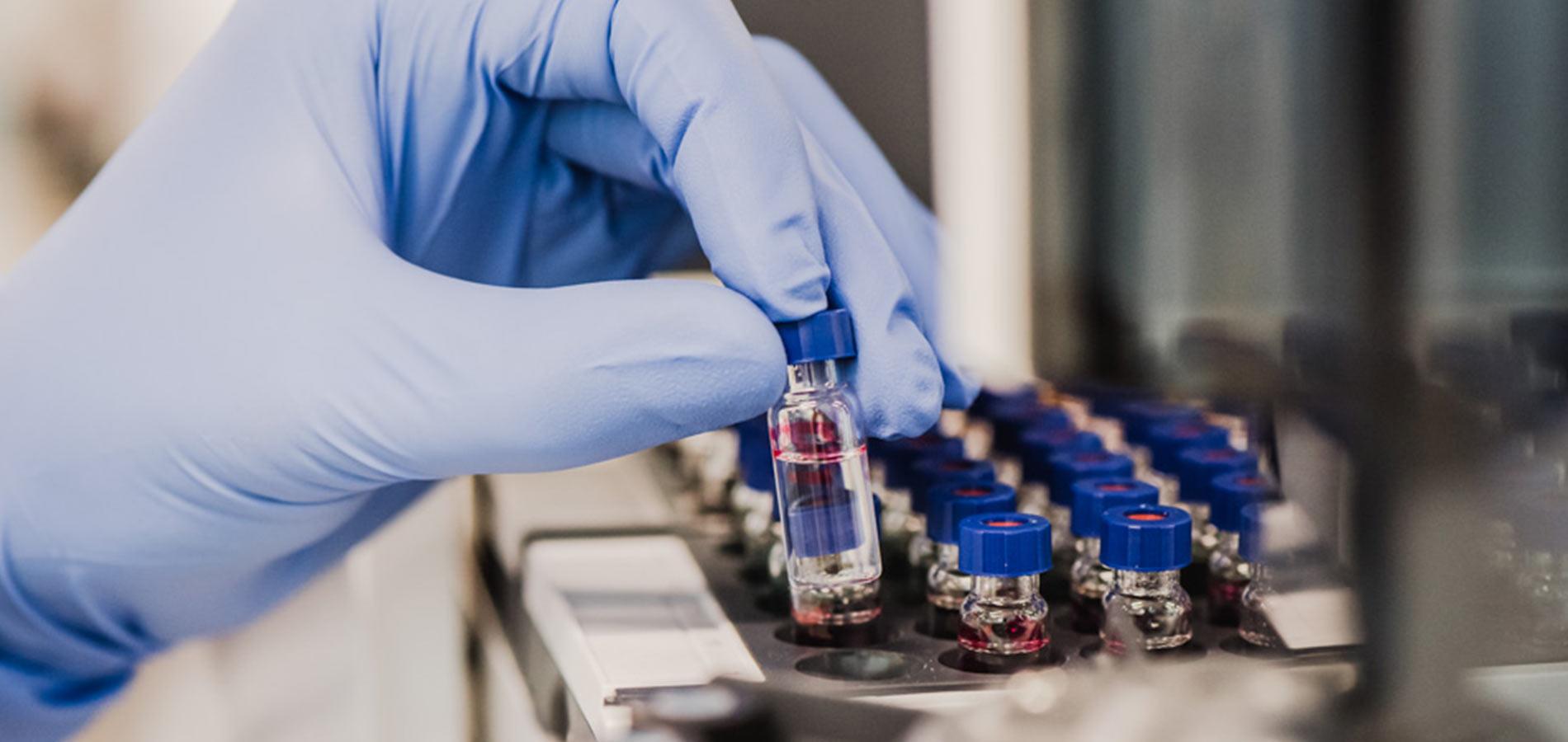 final quality control of Bedrocan medicinal cannabis