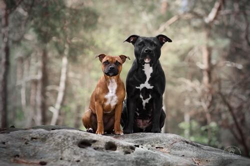 Naya & Rewa
