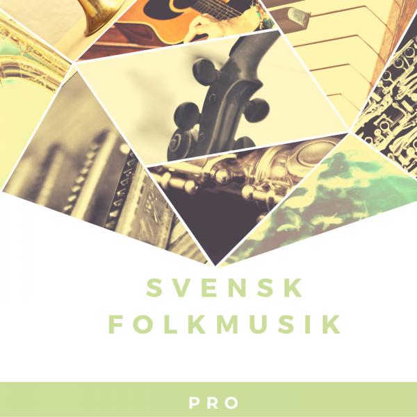 Onlinekurs Svensk Folkmusik PRO kurs