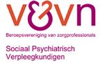V&VN2
