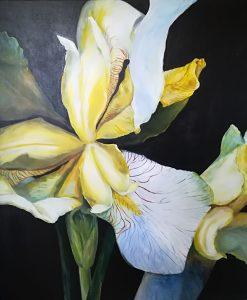 Blomster Hvid Iris Akryl Gitte Levin