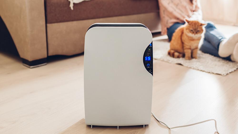 luftfuktighet inne hus