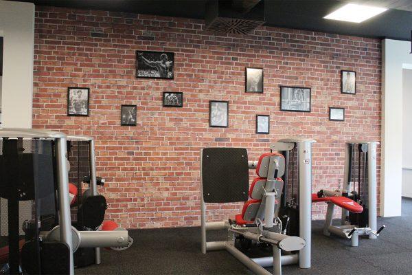 fitness_arena_0021_IMG_0373.JPG