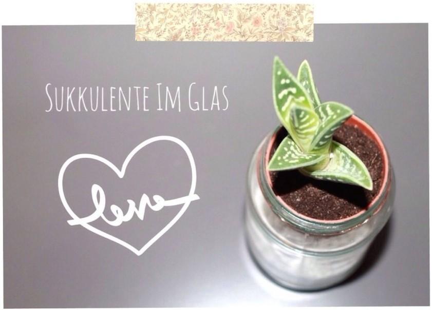Sukkulente im Glas - Mini-DIY-2