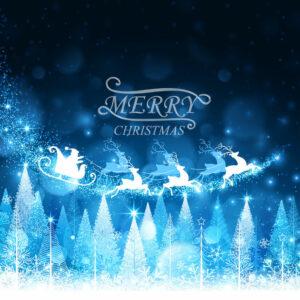 Vrolijk Kerstfeest !