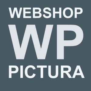 Webshop Pictura Aijen