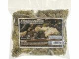 Winter Mix Lichen