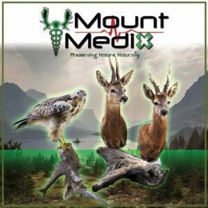 Mount Medix