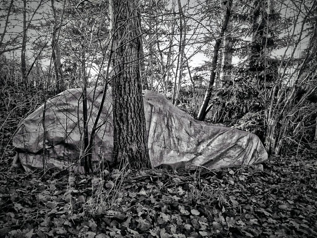 An abandoned car under a tarpaulin in the woods, an illustration for dystopian novels. Black and white photo by Mihaela Limberea.