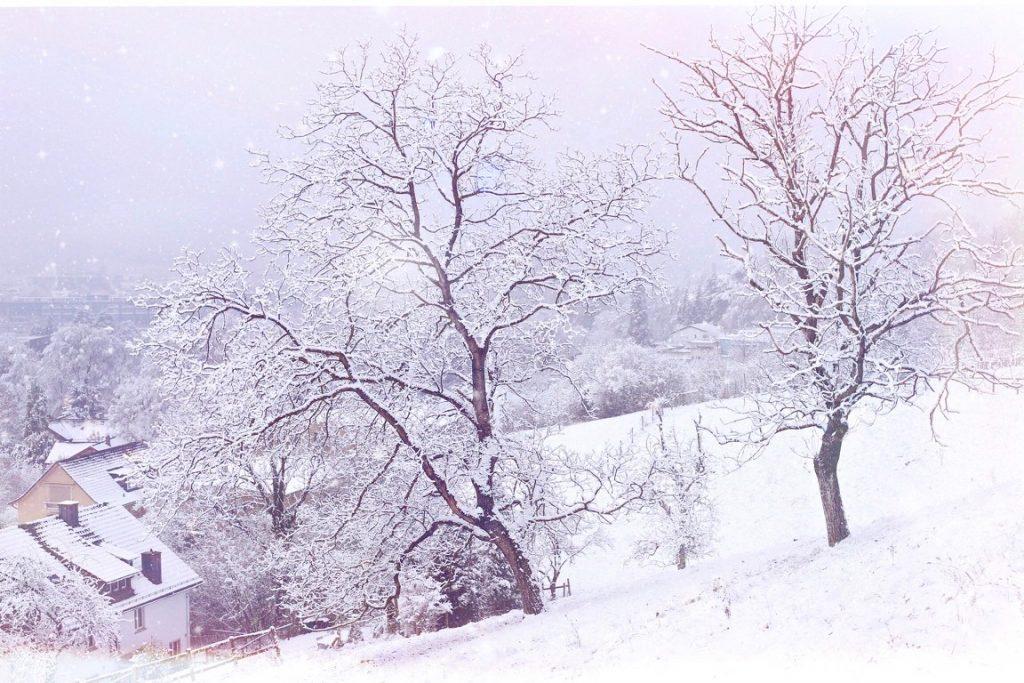 Winter landscape in Winterthur, Switzerland. Photo by Mihaela Limberea