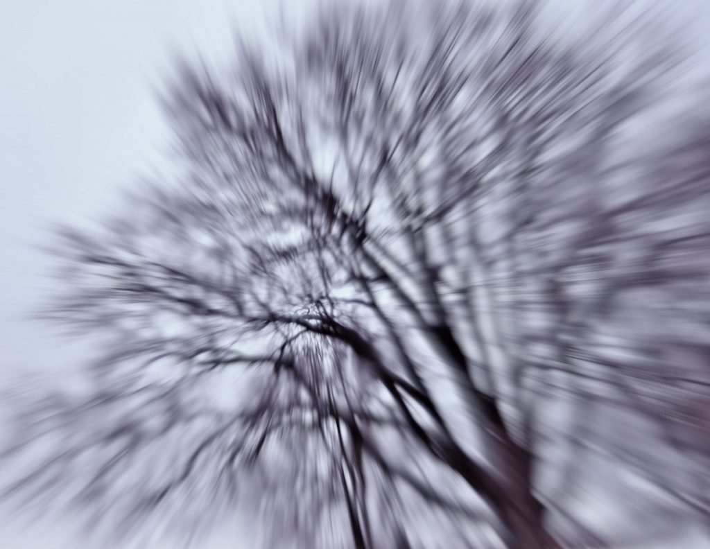 A distorted tree image to illustrate a headache. Photo by Mihaela Limberea