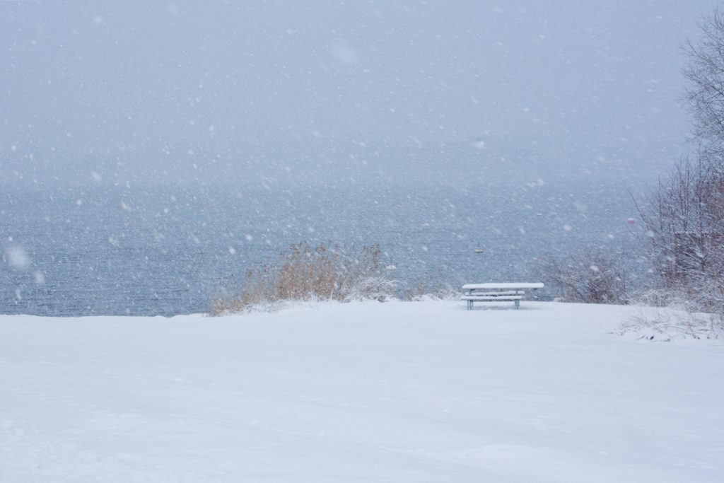 Seashore blanketed in snow. Photo by Mihaela LImberea