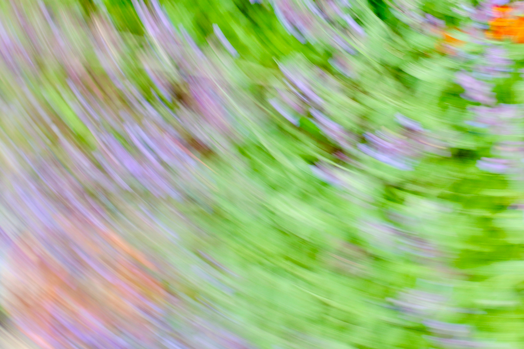 An Intentional Camera Movement (ICM) Photograph by Mihaela Limberea, in tones of green, lavender and orange