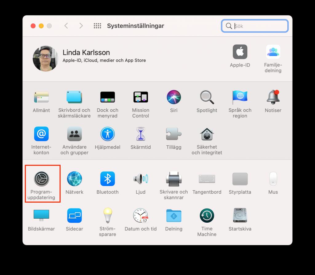 Inställningar under macOS.