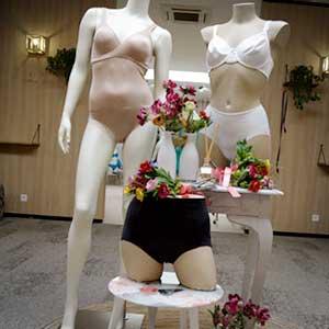sint-niklaas femina-impressies-corsetterie