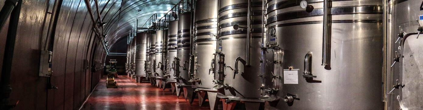 Datenbank größte deutsche Brauereien