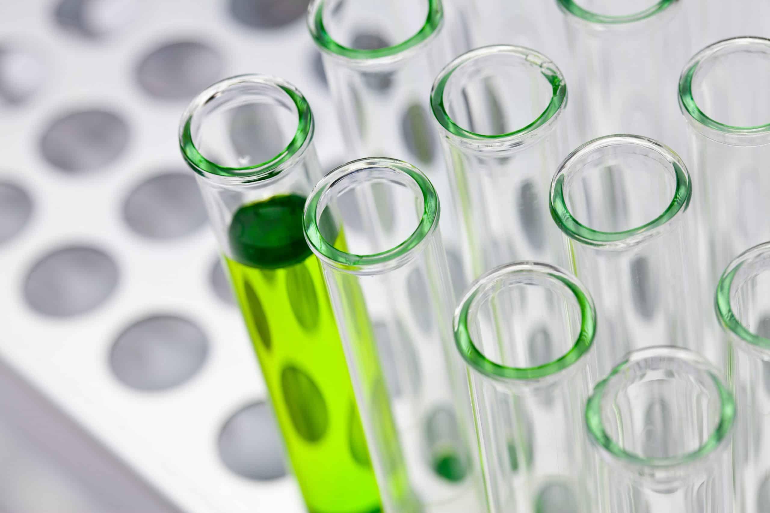 Chemieunternehmen aus Ludwigshafen engagiert sich für Lithium-Recycling in Schwarzheide