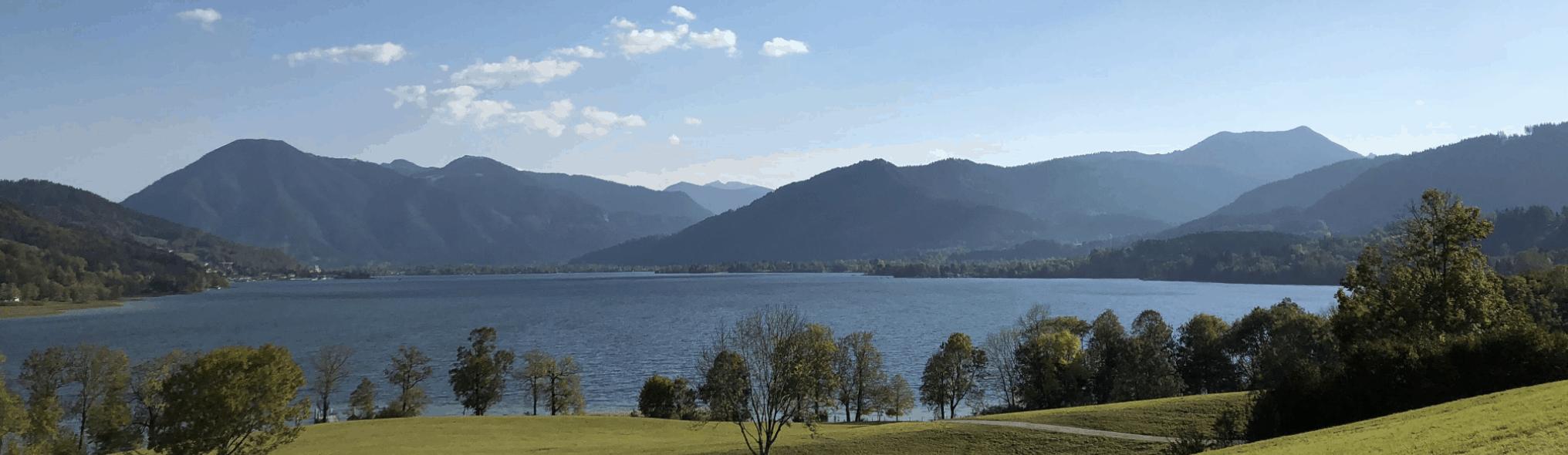 Wichtigste Immobilienmakler Schweiz