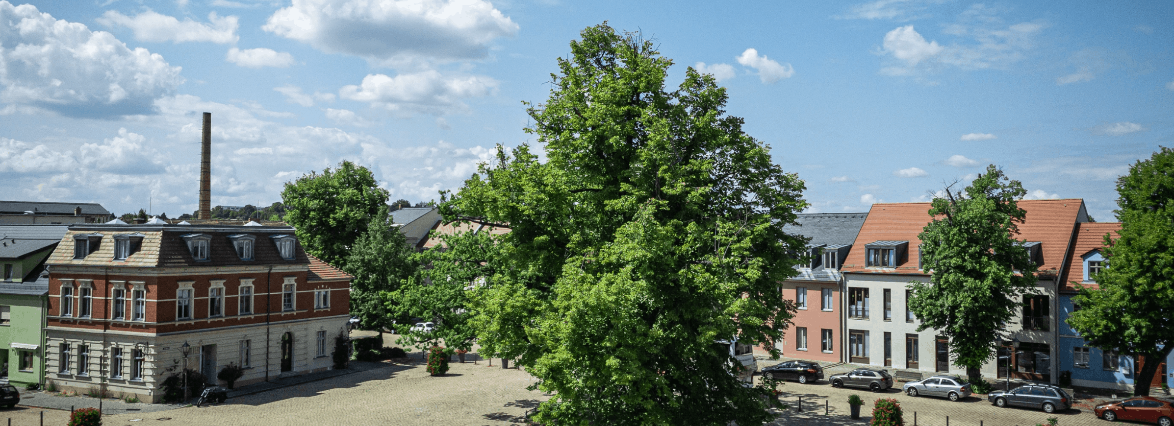 Datenbank Unternehmen Brandenburg