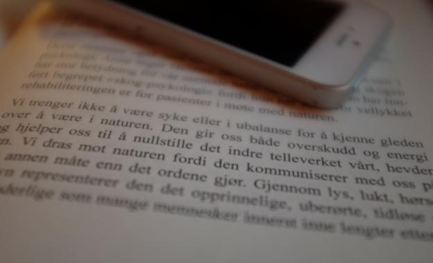 (foto: Øystein Hauge)