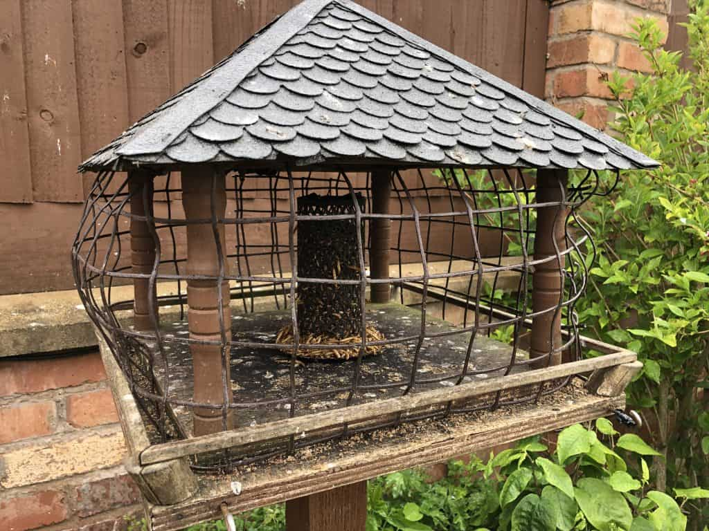 Bird table with mesh